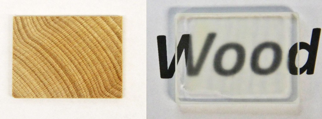 Transparent wood is now a thing.